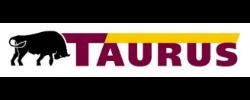 Taurus R19