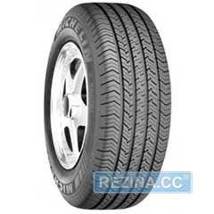 Купить Всесезонная шина MICHELIN X Radial 175/70R13 82T