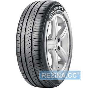 Купить Летняя шина PIRELLI Cinturato P1 Verde 205/55R16 91H