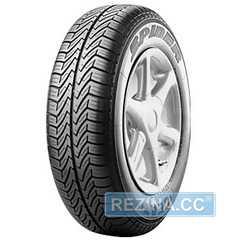 Купить Летняя шина CEAT Spider 165/70R13 83R