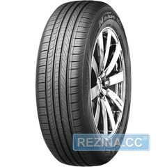 Летняя шина NEXEN N Blue Eco SH01 - rezina.cc