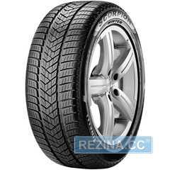 Купить Зимняя шина PIRELLI Scorpion Winter 235/55R19 101H