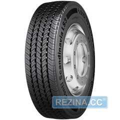 Грузовая шина CONTINENTAL Conti Scandinavia LS3 - rezina.cc