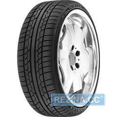 Купить Зимняя шина ACHILLES W101X 205/55R16 91H