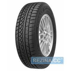 Купить Зимняя шина PETLAS SnowMaster W651 205/55R17 91H