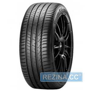 Купить Летняя шина PIRELLI Cinturato P7 P7C2 215/55R18 99V