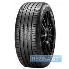 Купить Летняя шина PIRELLI Cinturato P7 P7C2 225/40R18 92Y